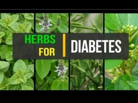 Taking Herbs With My Diabetes Medication Is It Safe | Diabetic Connect