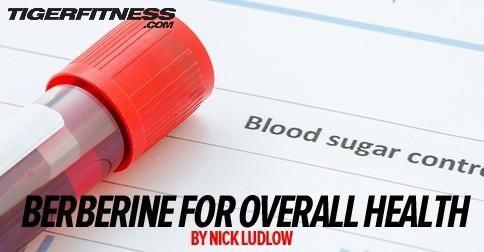 Berberine Vs Metformin Bodybuilding