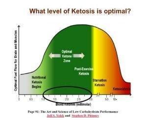 Excerpt From Hcg 2.0 – Understanding Ketosis