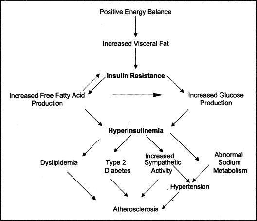 Type 3 Diabetes Mayo Clinic