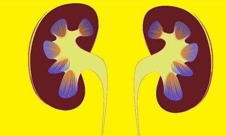 Metformin Acute Kidney Injury