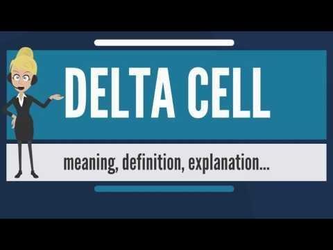 3.3 The Delta Ratio