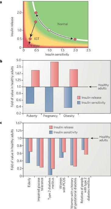 Mechanisms Linking Obesity To Insulin Resistance And Type 2 Diabetes
