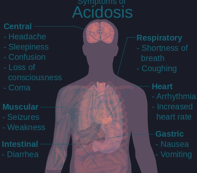 Metabolic And Respiratory Acidosis And Alkalosis