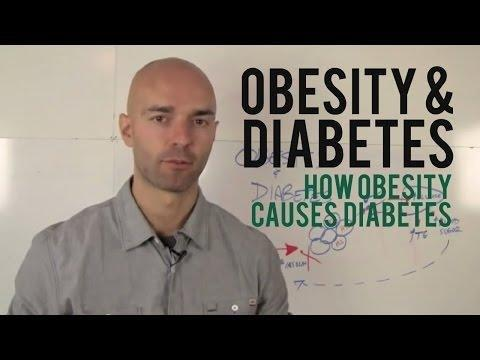 Why Are Type 2 Diabetes Overweight