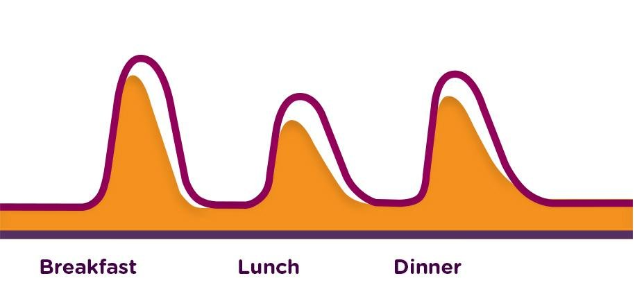 About Fast-acting Mealtime Insulin