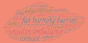 Insulin And Weight Loss Connection