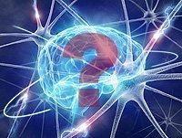 Metformin And Mental Confusion