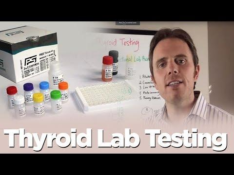 Smartfigures Lab - Search