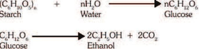 Chemical Equation For Conversion Of Starch To Glucose And Glucose To...