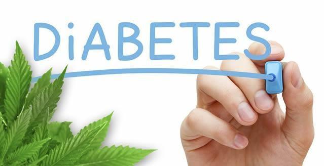 Cbd Oil And Diabetes