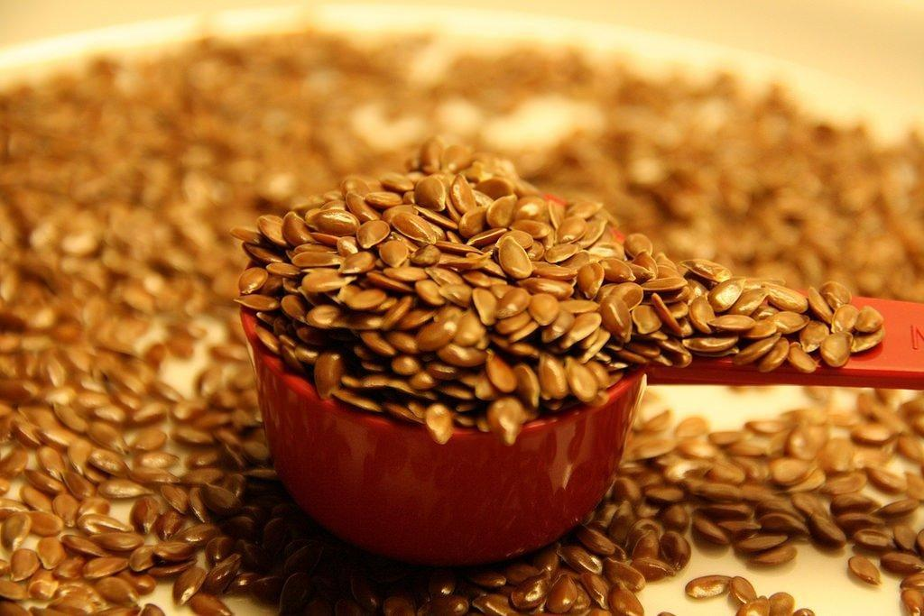 Flaxseed For Better Health And Better Blood Sugars?