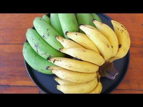 Raw Banana Starch As Resistant Starch | Resistant Starch