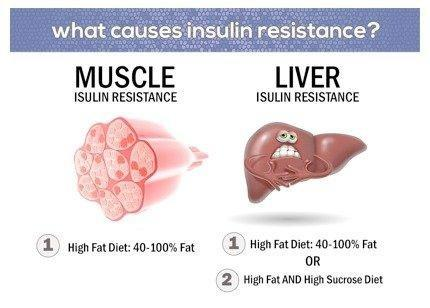 Low Carb Reverse Insulin Resistance