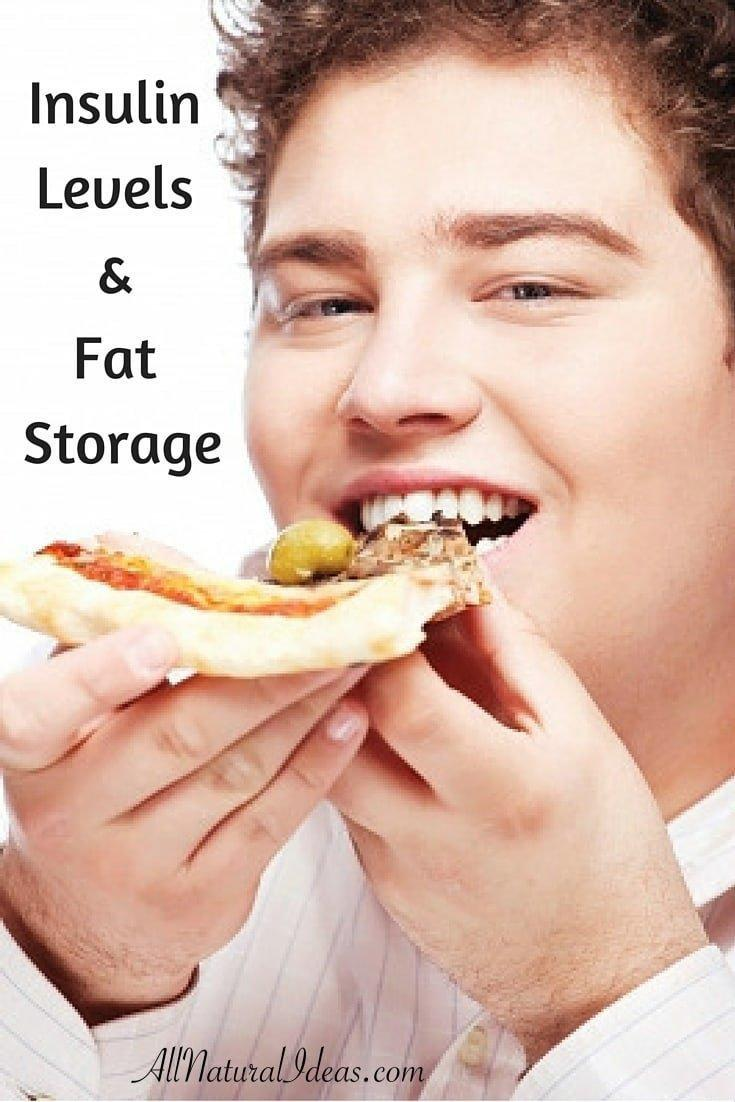 Insulin Levels And Fat Storage