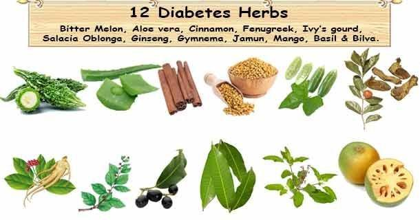 Natural Diabetes Herbs