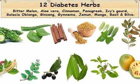 Natural Diabetes Herbs