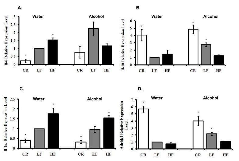 Effects Of Body Weight And Alcohol Consumption On Insulin Sensitivity