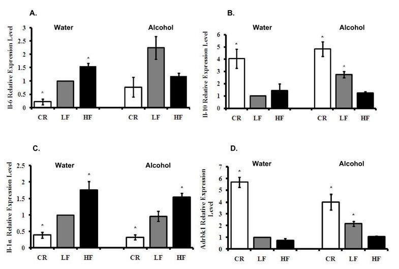 Insulin And Alcohol Consumption