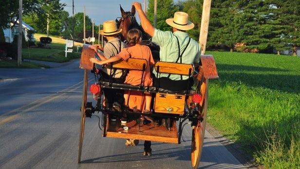 Genetic mutation helps Amish families fight aging, diabetes and even baldness