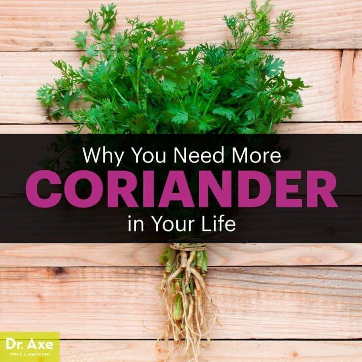 Control Blood Sugar, Cholesterol & Blood Pressure With Coriander Seeds