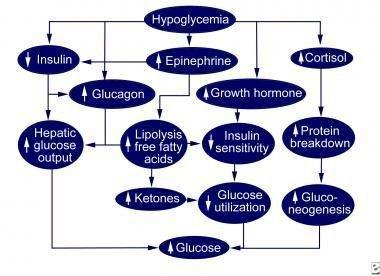 Pediatric Hypoglycemia