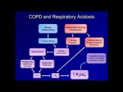 Metabolic Compensation For Respiratory Acidosis