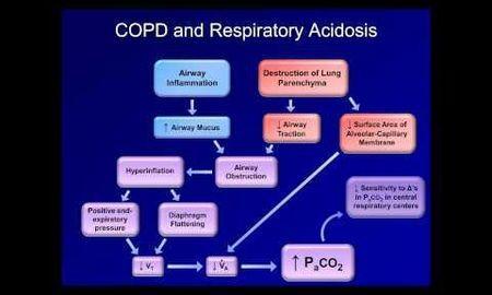 Paradoxical Intracellular Acidosis