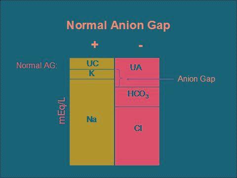 Normal Anion Gap Metabolic Acidosis Wiki