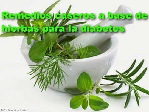 8 Remedios Con Hierbas Eficaces Para La Diabetes