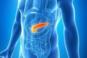 Pancreas: Function, Location & Diseases