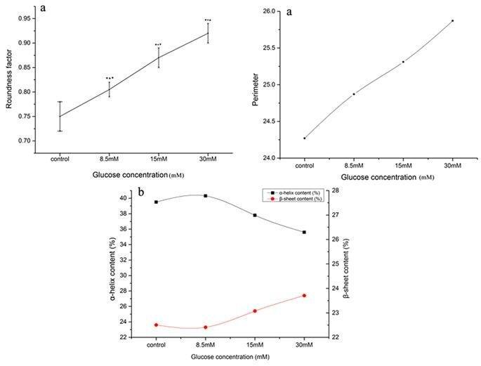 The Impact Of The Hba1c Level Of Type 2 Diabetics On The Structure Of Haemoglobin