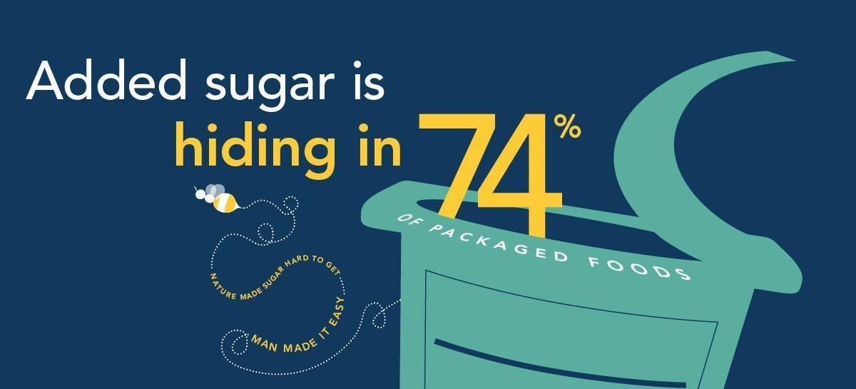 Sugarscience.ucsf.edu | Metabolizing Sugar