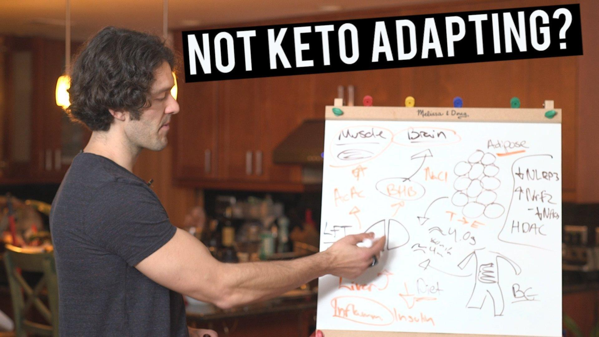 #208: Keto Adaptation And The Gut Liver Axis