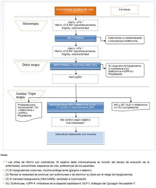 Gua De Prctica Clnica Sobre Diabetes Tipo 2