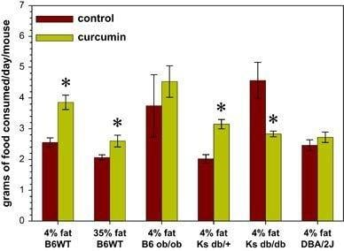 Proteasome Inhibitors, Including Curcumin, Improve Pancreatic -cell Function And Insulin Sensitivity In Diabetic Mice