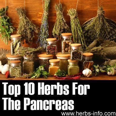 Pancreas Regeneration Herbs