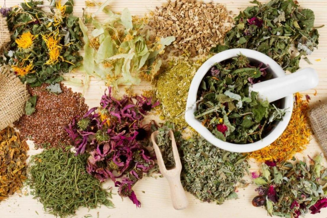 Medicinal Plants Used For Treatment Of Diabetes