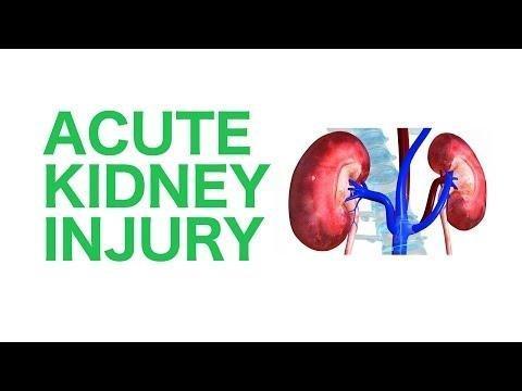 Contrast Induced Acute Kidney Injury (aki) - General Practice Notebook