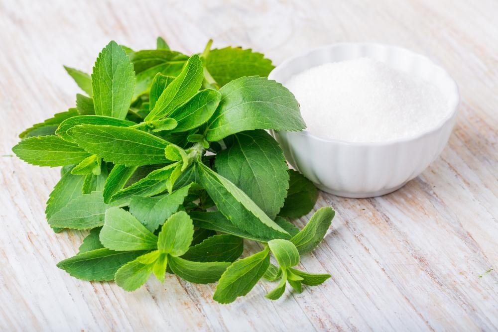 Ku Leuven Researchers Unravel How Stevia Controls Blood Sugar Levels