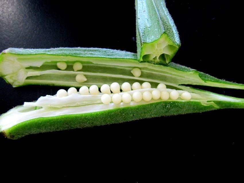 How To Use Okra To Treat And Prevent Diabetes