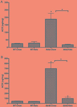 Reversal Of Diabetic Nephropathy By A Ketogenic Diet