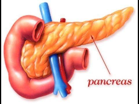 Partial Removal Of Pancreas And Spleen