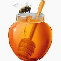 Is Honey Paleo?