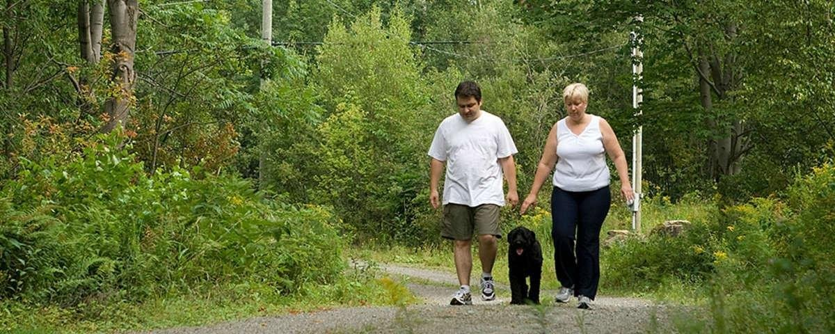 Why People With Type 2 Diabetes Should Start A Walking Program
