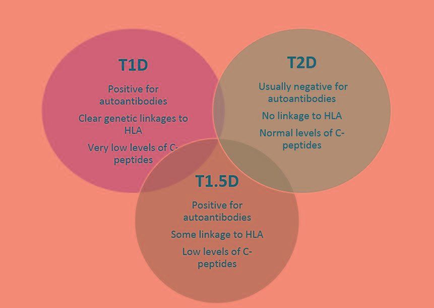 Type 1.5 Diabetes: An Overview