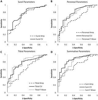 Nerve Conduction Study Diabetic Peripheral Neuropathy