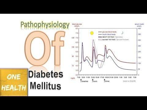The Pathophysiology Of Gestational Diabetes Is Similar In Its Tissue Effects To