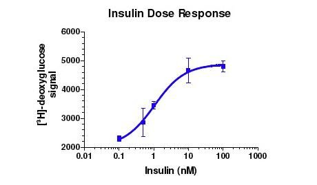 Glucose Uptake Assay Slideshare