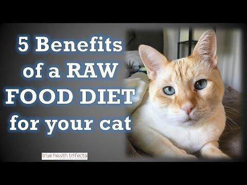 Those Of You That Make The Raw Diet...